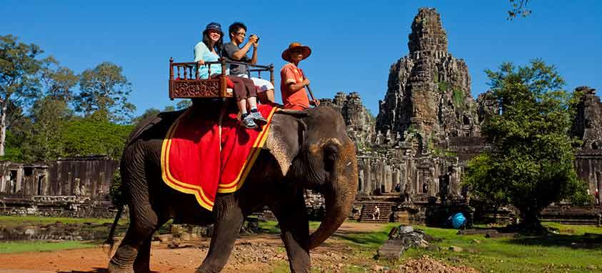 Wildlife Tourist Attractions