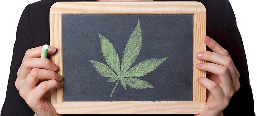 marijuana at events
