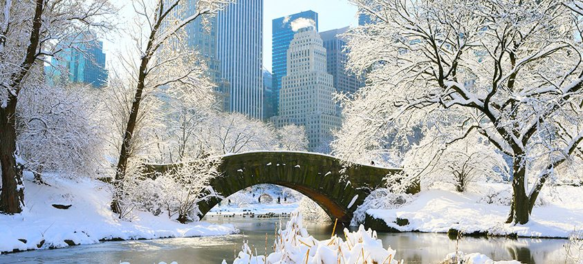 Central Park in heavy snow