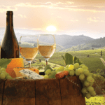 Wine Country: Beyond the Bottle