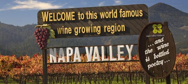 Vineyards Napa California Wine Country