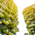 Healthy World: Vertical Forests